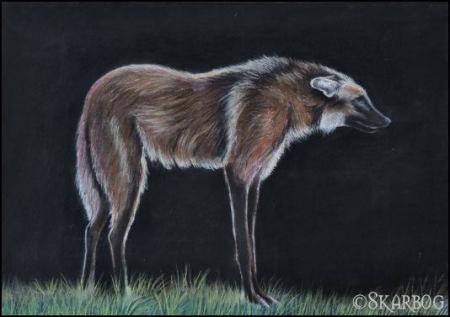 Manenwolf 1 Pastel A3