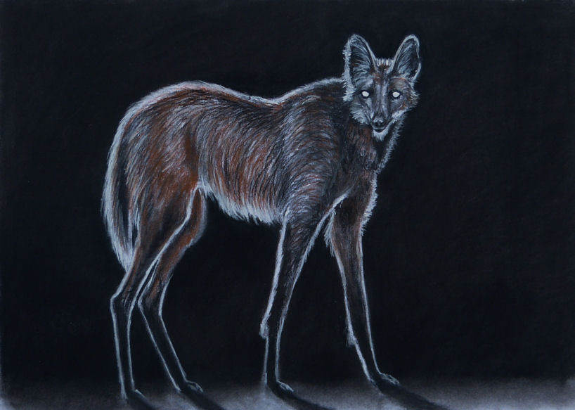 Manenwolf 1 Pastel A3