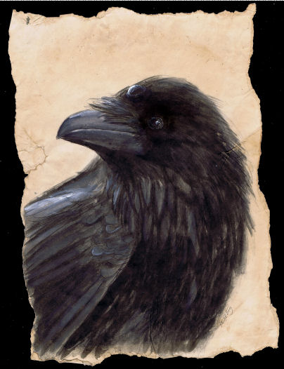 Three eyed Raven INkt