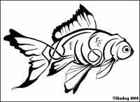 Veiltail_Goldfish_by_Skarbog